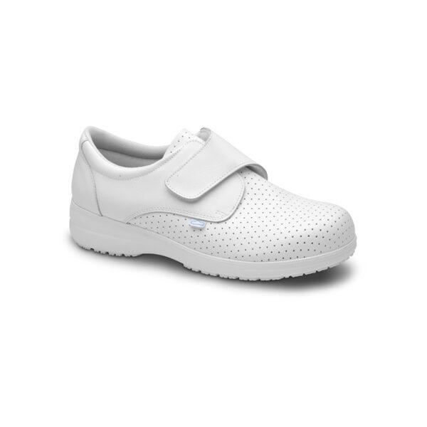 Zapato-Sigma